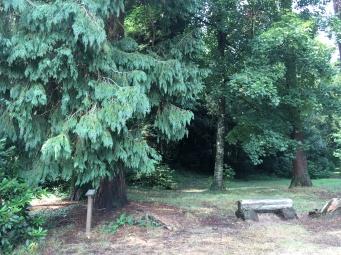Jardin et banc /cultivetaculture