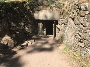 Vue sur l'entrée du tumulus /cultivetaculture