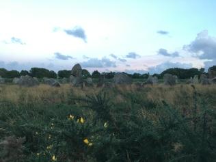 Vue sur les menhirs en soirée /cultivetaculture