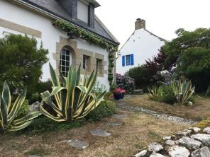 Maison dans Saint Cado /cultivaculture
